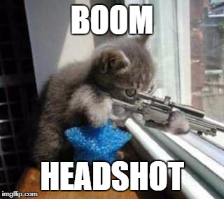 CatSniper | BOOM HEADSHOT | image tagged in catsniper | made w/ Imgflip meme maker