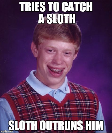 Bad Luck Brian sloth | TRIES TO CATCH A SLOTH SLOTH OUTRUNS HIM | image tagged in memes,bad luck brian,sloth | made w/ Imgflip meme maker