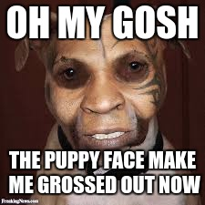 WARNING! puppy face does not work on me anymore (Puppy Week, A Lordcakethief Event! From September 11th -17th!) | OH MY GOSH THE PUPPY FACE MAKE ME GROSSED OUT NOW | image tagged in ugly dog rock,memes,funny,dank memes,puppy face,puppy week | made w/ Imgflip meme maker