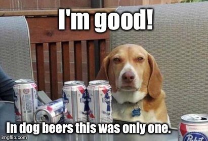 Dog meme week! | I'm good! In dog beers this was only one. | image tagged in memes,dog week,dog beers,one | made w/ Imgflip meme maker