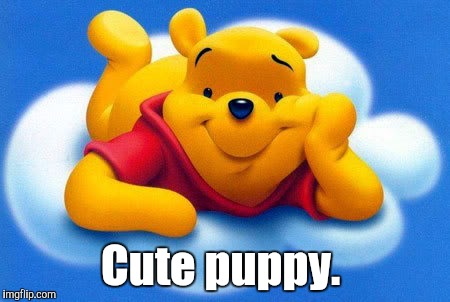 Cute puppy. | made w/ Imgflip meme maker