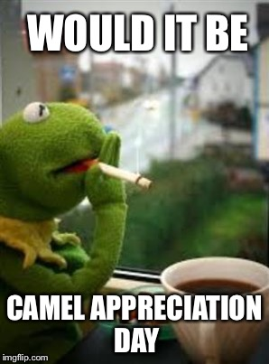 WOULD IT BE CAMEL APPRECIATION DAY | made w/ Imgflip meme maker