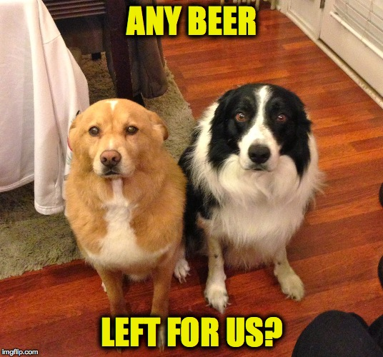 ANY BEER LEFT FOR US? | made w/ Imgflip meme maker