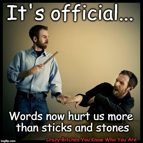 It's official... Crazy B**ches You Know Who You Are Words now hurt us more than sticks and stones | image tagged in offended | made w/ Imgflip meme maker