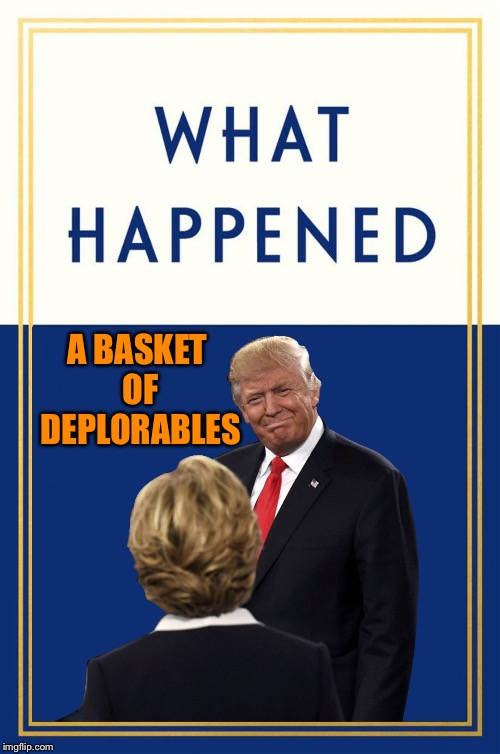 A BASKET OF DEPLORABLES | image tagged in what happened | made w/ Imgflip meme maker