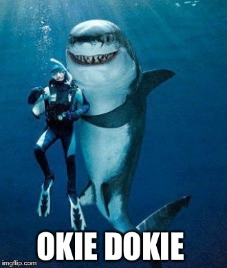 OKIE DOKIE | made w/ Imgflip meme maker