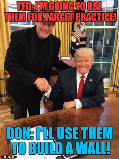 Trump Nugent | TED: I'M GOING TO USE THEM FOR TARGET PRACTICE! DON: I'LL USE THEM TO BUILD A WALL! | image tagged in trump nugent | made w/ Imgflip meme maker