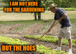 I AM NOT HERE FOR THE GARDENING BUT THE HOES | made w/ Imgflip meme maker