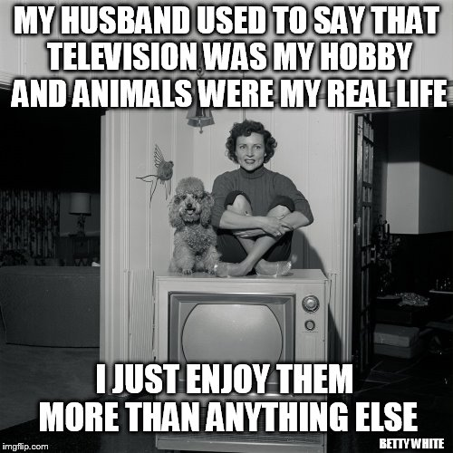Betty White Quote (Puppy Week, A Lordcakethief Event! From September 11th -17th!) | MY HUSBAND USED TO SAY THAT TELEVISION WAS MY HOBBY AND ANIMALS WERE MY REAL LIFE I JUST ENJOY THEM MORE THAN ANYTHING ELSE BETTY WHITE | image tagged in memes,puppy week,betty white,quotes,dogs,television | made w/ Imgflip meme maker