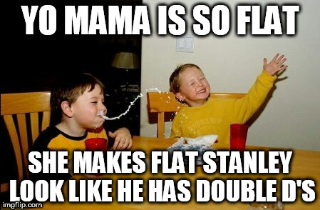 Yo Mamas So Fat Meme | YO MAMA IS SO FLAT SHE MAKES FLAT STANLEY LOOK LIKE HE HAS DOUBLE D'S | image tagged in memes,yo mamas so fat | made w/ Imgflip meme maker