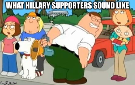 Peter Griffin Farting Megaphone | WHAT HILLARY SUPPORTERS SOUND LIKE | image tagged in peter griffin farting megaphone | made w/ Imgflip meme maker