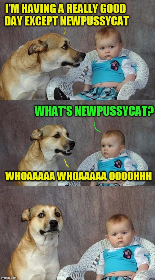 Dad Joke Dog (I never used this template before so I shall for Puppy Week LOL) | I'M HAVING A REALLY GOOD DAY EXCEPT NEWPUSSYCAT WHAT'S NEWPUSSYCAT? WHOAAAAA WHOAAAAA OOOOHHH | image tagged in memes,dad joke dog,tom jones,jokes,puppy week,whats new pussycat | made w/ Imgflip meme maker