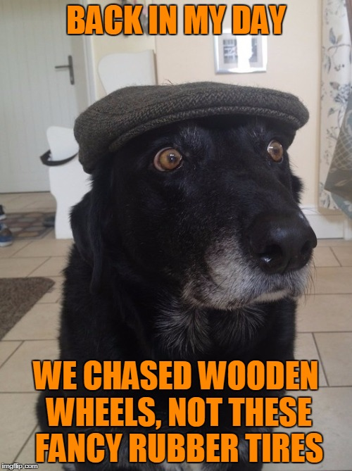 When I was your age... | BACK IN MY DAY WE CHASED WOODEN WHEELS, NOT THESE FANCY RUBBER TIRES | image tagged in back in my day dog,memes,reinventing the wheel,rubber tires,rubber chicken,time to clock in | made w/ Imgflip meme maker