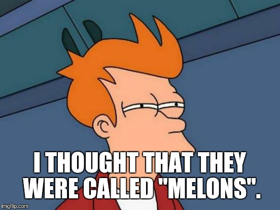 "Futurama Fry Meme | I THOUGHT THAT THEY WERE CALLED ""MELONS"". 