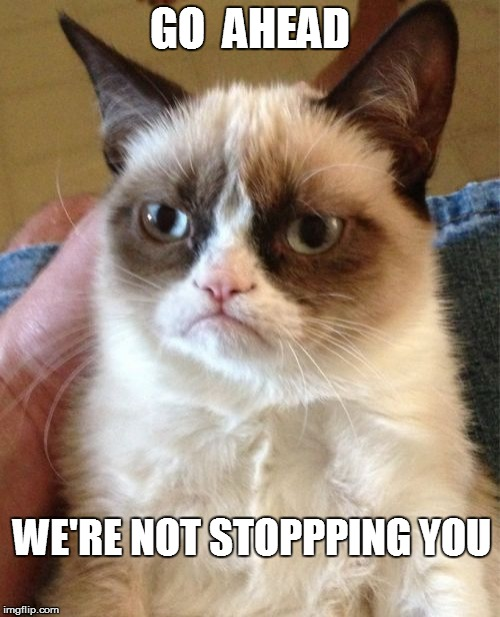 Grumpy Cat Meme | GO  AHEAD WE'RE NOT STOPPPING YOU | image tagged in memes,grumpy cat | made w/ Imgflip meme maker