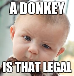 Skeptical Baby Meme | A DONKEY IS THAT LEGAL | image tagged in memes,skeptical baby | made w/ Imgflip meme maker