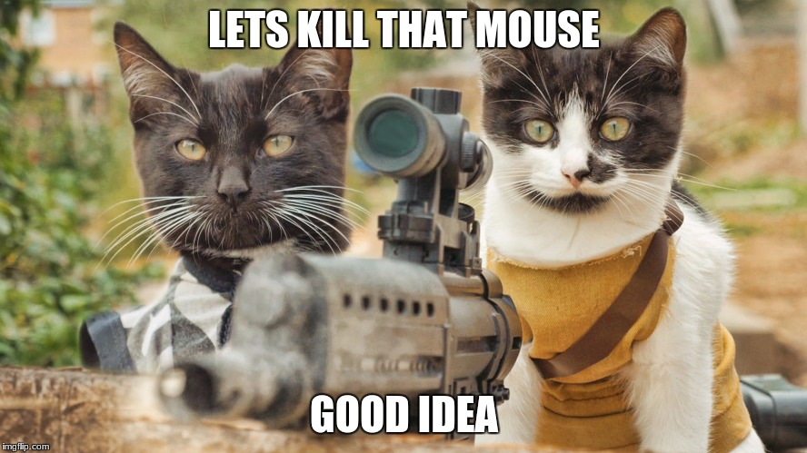 LETS KILL THAT MOUSE GOOD IDEA | image tagged in cat vs mouse | made w/ Imgflip meme maker