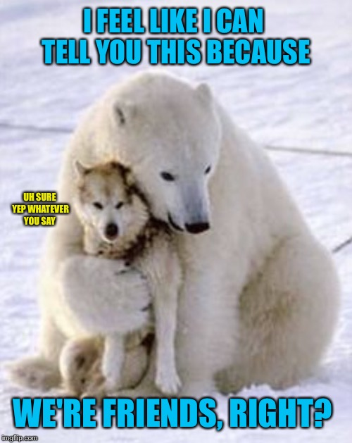 Everybody needs someone they can confide in. Hopefully they don't  maul you to death. | I FEEL LIKE I CAN TELL YOU THIS BECAUSE WE'RE FRIENDS, RIGHT? UH SURE YEP WHATEVER YOU SAY | image tagged in polar bear,wolves,arctic,snow,friends,friendship | made w/ Imgflip meme maker