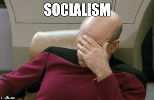 Captain Picard Facepalm Meme | SOCIALISM | image tagged in memes,captain picard facepalm | made w/ Imgflip meme maker