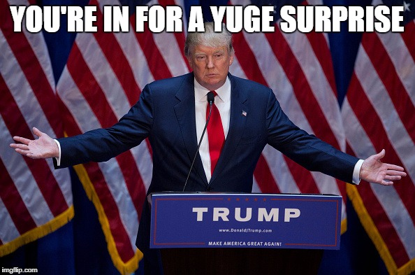 Trump Bruh | YOU'RE IN FOR A YUGE SURPRISE | image tagged in trump bruh | made w/ Imgflip meme maker