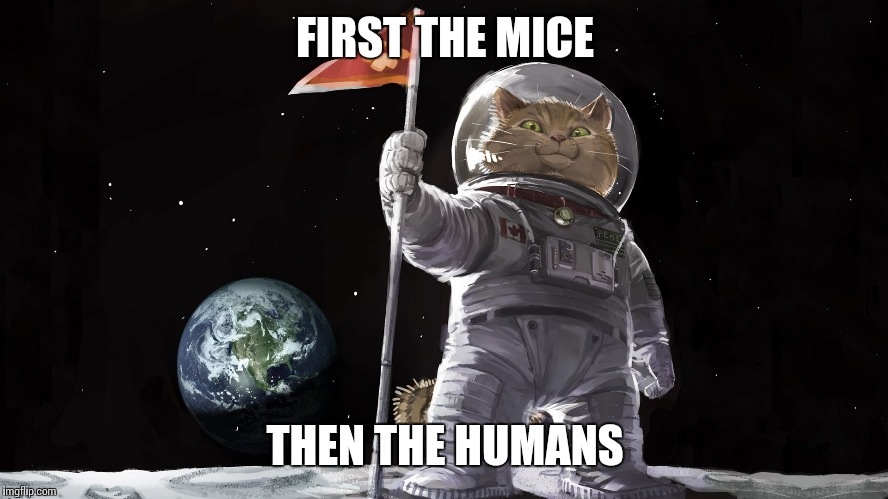 FIRST THE MICE THEN THE HUMANS | made w/ Imgflip meme maker