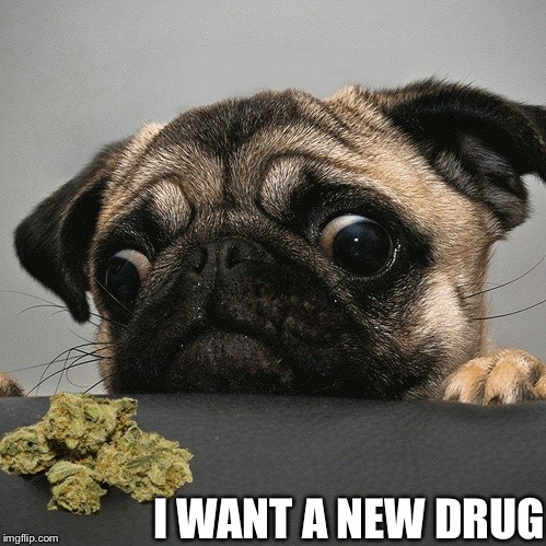 I WANT A NEW DRUG | made w/ Imgflip meme maker