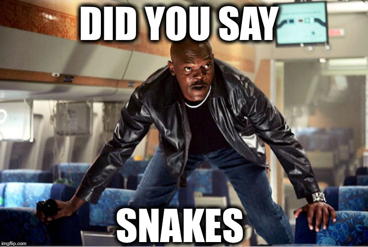 DID YOU SAY SNAKES | made w/ Imgflip meme maker
