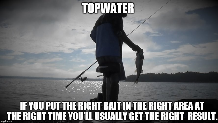 Topwater | TOPWATER IF YOU PUT THE RIGHT BAIT IN THE RIGHT AREA AT THE RIGHT TIME YOU'LL USUALLY GET THE RIGHT  RESULT. | image tagged in fishing | made w/ Imgflip meme maker