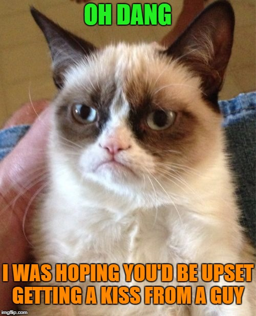 Grumpy Cat Meme | OH DANG I WAS HOPING YOU'D BE UPSET GETTING A KISS FROM A GUY | image tagged in memes,grumpy cat | made w/ Imgflip meme maker