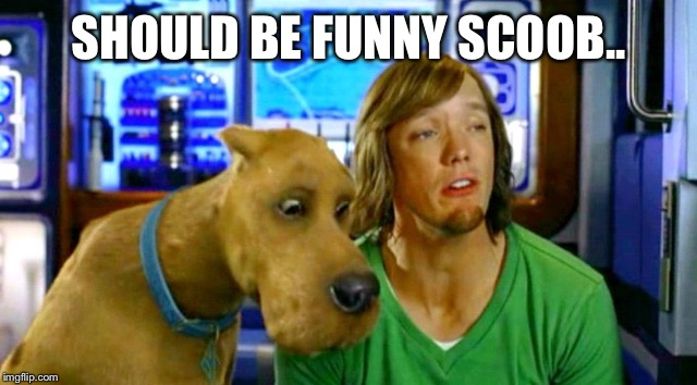 SHOULD BE FUNNY SCOOB.. | image tagged in shaggy 2 | made w/ Imgflip meme maker