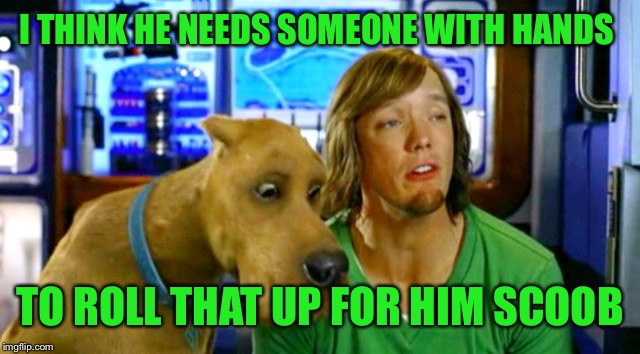 I THINK HE NEEDS SOMEONE WITH HANDS TO ROLL THAT UP FOR HIM SCOOB | image tagged in shaggy 2 | made w/ Imgflip meme maker