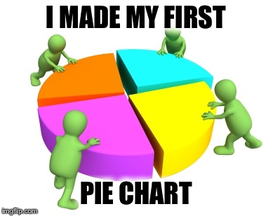 First Time Making A Pie Chart On Imgflip! | I MADE MY FIRST PIE CHART | image tagged in pie charts,memes,imgflip,first time | made w/ Imgflip meme maker