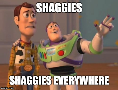 X, X Everywhere Meme | SHAGGIES SHAGGIES EVERYWHERE | image tagged in memes,x,x everywhere,x x everywhere | made w/ Imgflip meme maker
