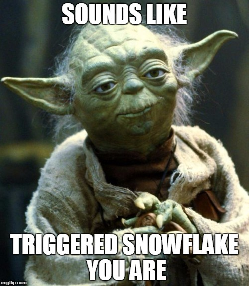 SOUNDS LIKE TRIGGERED SNOWFLAKE YOU ARE | image tagged in memes,star wars yoda | made w/ Imgflip meme maker
