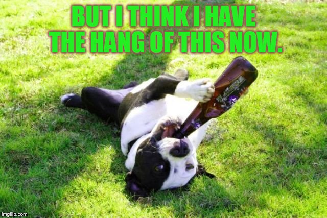 Are You Questioning My Ability (dog) | BUT I THINK I HAVE THE HANG OF THIS NOW. | image tagged in memes,dog memes,dog says,i can,drink,from the bottle | made w/ Imgflip meme maker