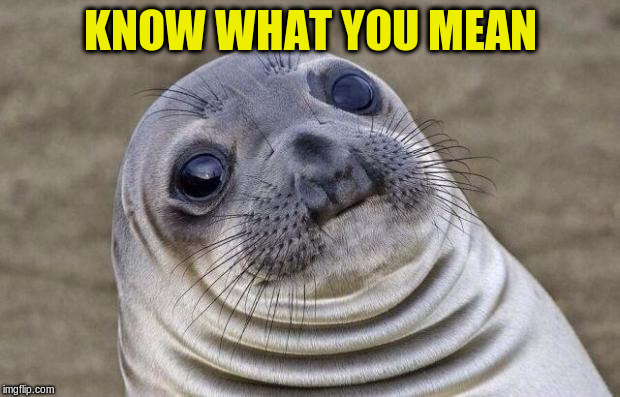 Awkward Moment Sealion Meme | KNOW WHAT YOU MEAN | image tagged in memes,awkward moment sealion | made w/ Imgflip meme maker