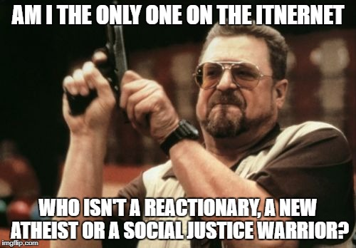 Am I The Only One Around Here Meme | AM I THE ONLY ONE ON THE ITNERNET WHO ISN'T A REACTIONARY, A NEW ATHEIST OR A SOCIAL JUSTICE WARRIOR? | image tagged in memes,am i the only one around here | made w/ Imgflip meme maker