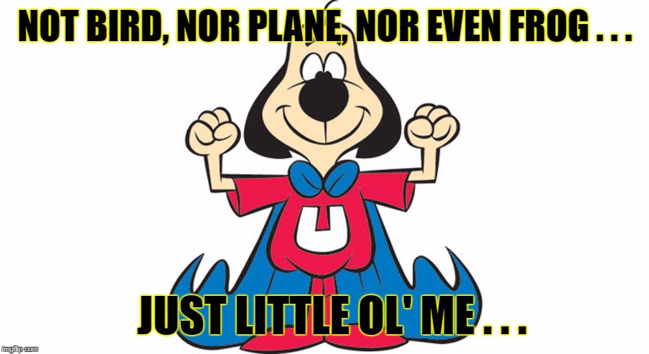 NOT BIRD, NOR PLANE, NOR EVEN FROG . . . JUST LITTLE OL' ME . . . | made w/ Imgflip meme maker