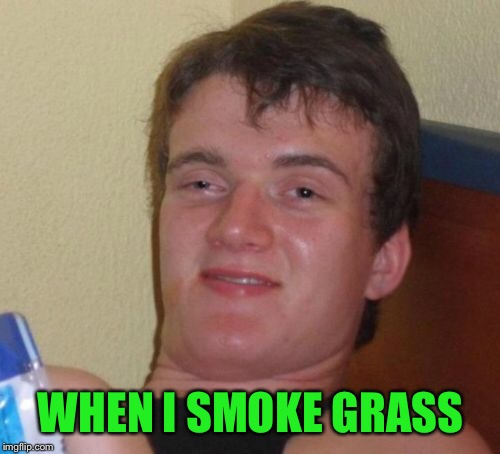 10 Guy Meme | WHEN I SMOKE GRASS | image tagged in memes,10 guy | made w/ Imgflip meme maker