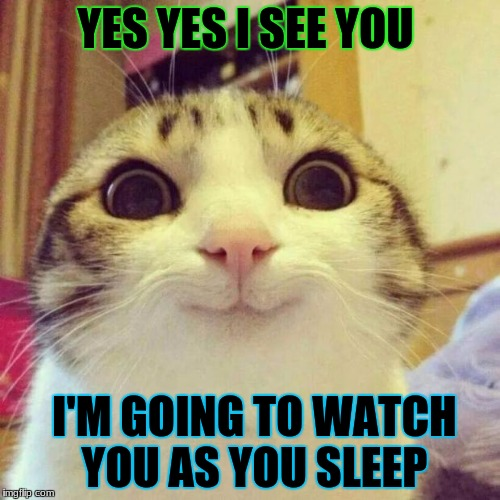 Smiling Cat Meme | YES YES I SEE YOU I'M GOING TO WATCH YOU AS YOU SLEEP | image tagged in memes,smiling cat | made w/ Imgflip meme maker