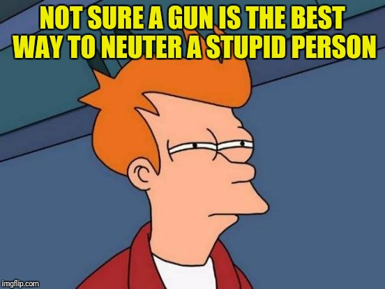 Futurama Fry Meme | NOT SURE A GUN IS THE BEST WAY TO NEUTER A STUPID PERSON | image tagged in memes,futurama fry | made w/ Imgflip meme maker