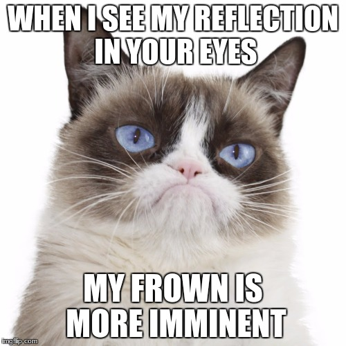 Grumpy Cat Uses A Big Word | WHEN I SEE MY REFLECTION IN YOUR EYES MY FROWN IS MORE IMMINENT | image tagged in grumpy cat not amused | made w/ Imgflip meme maker