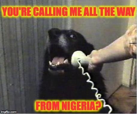 Doggo Gets Scammed | YOU'RE CALLING ME ALL THE WAY FROM NIGERIA? | image tagged in nigerian prince,ya right -/ | made w/ Imgflip meme maker