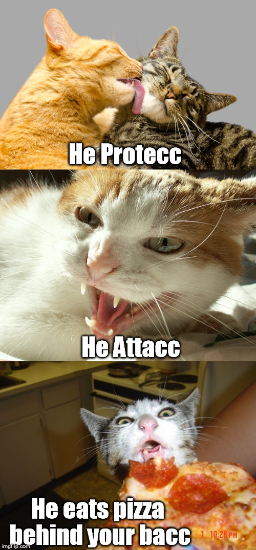 He Protecc He eats pizza behind your bacc He Attacc | made w/ Imgflip meme maker