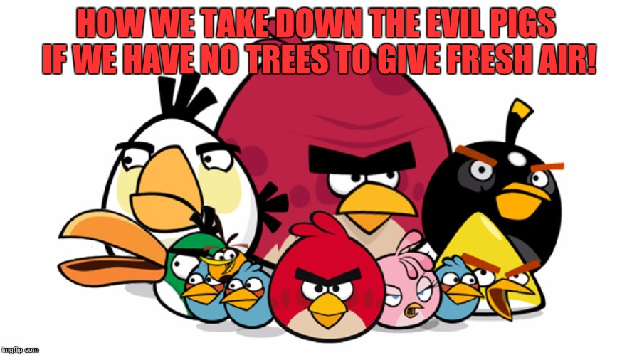 Varry Angry Birds | DON'T WORK FOR YOUR BOSSHE WILL HAVE FERRARI IN FUTURE MAKE OTHERS WORK FOR YOU | image tagged in varry angry birds | made w/ Imgflip meme maker