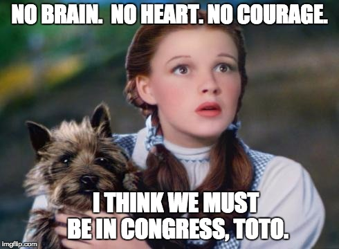 NO BRAIN.  NO HEART. NO COURAGE. I THINK WE MUST BE IN CONGRESS, TOTO. | image tagged in toto wizard of oz | made w/ Imgflip meme maker