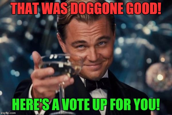 Leonardo Dicaprio Cheers Meme | THAT WAS DOGGONE GOOD! HERE'S A VOTE UP FOR YOU! | image tagged in memes,leonardo dicaprio cheers | made w/ Imgflip meme maker