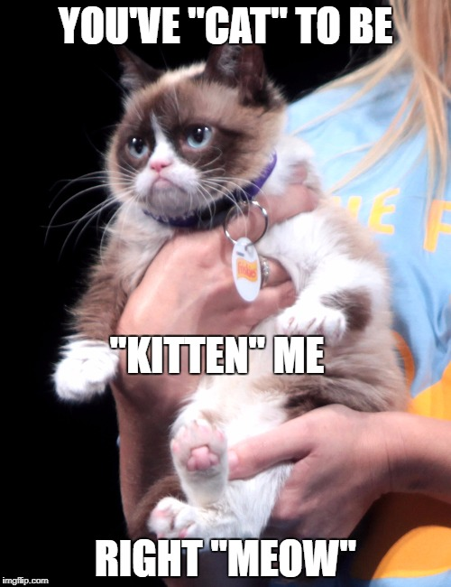 "YOU'VE ""CAT"" TO BE RIGHT ""MEOW"" ""KITTEN"" ME 