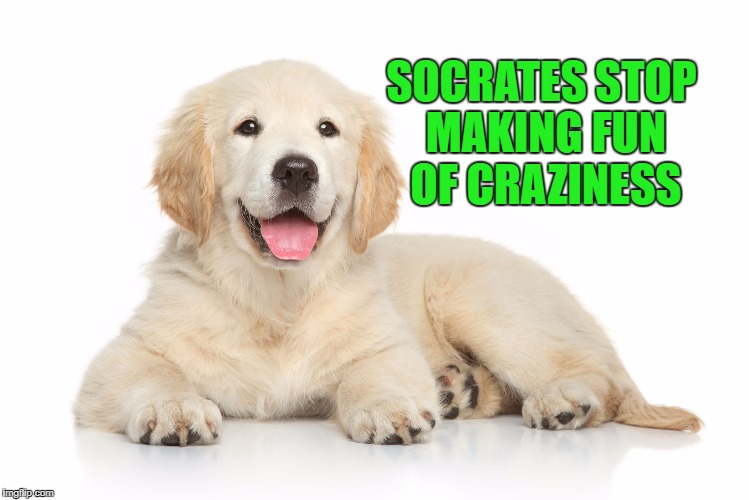 SOCRATES STOP MAKING FUN OF CRAZINESS | made w/ Imgflip meme maker
