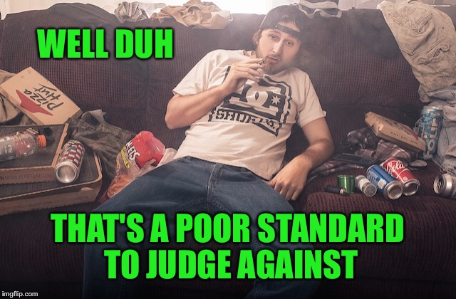 Stoner on couch | WELL DUH THAT'S A POOR STANDARD TO JUDGE AGAINST | image tagged in stoner on couch | made w/ Imgflip meme maker
